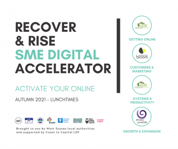 Recover and Rise SME Digital Accelerator square promotional image